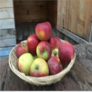 Pommes Bio d'Alsace Natyra