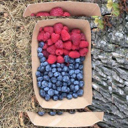 Image de box de fruit
