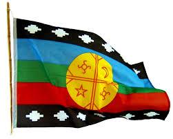 """Declaración pública:Parlamento Mapuche de Koz Koz: """"La verdadera pandemia es el racismo y la indolencia"""""""