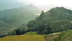 Vietnam en 3 semanas