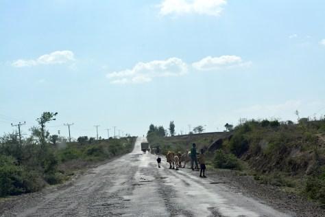 camino_mercado_etiopia
