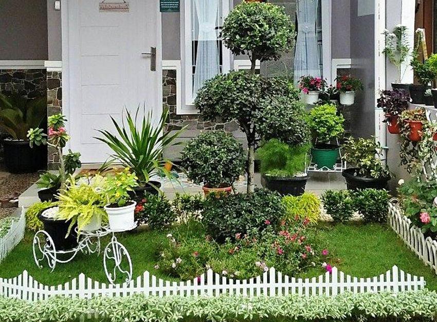 indahnya taman depan rumah model teras rumah sederhana