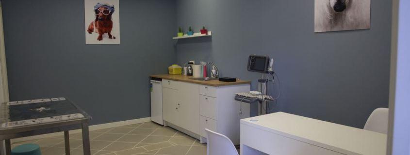 Sala de Recuperació Exclusiva Gats