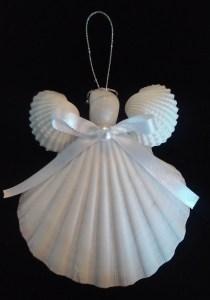 shell-angel
