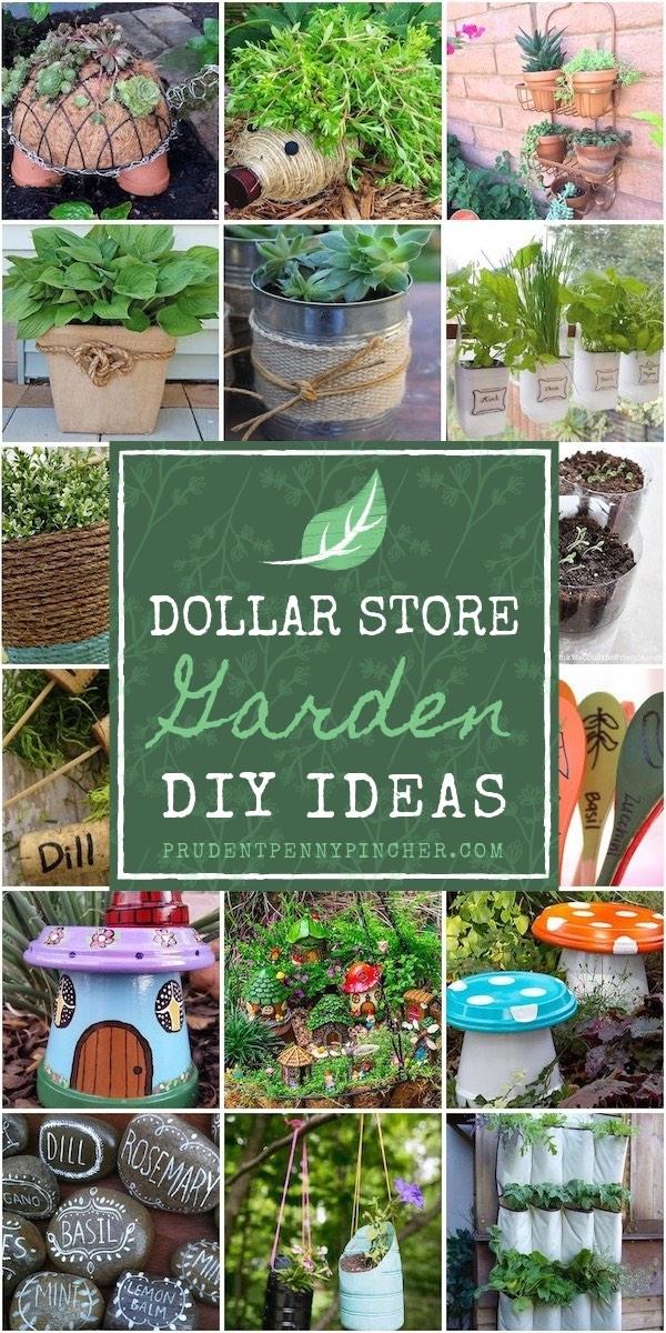 100 dollar store garden