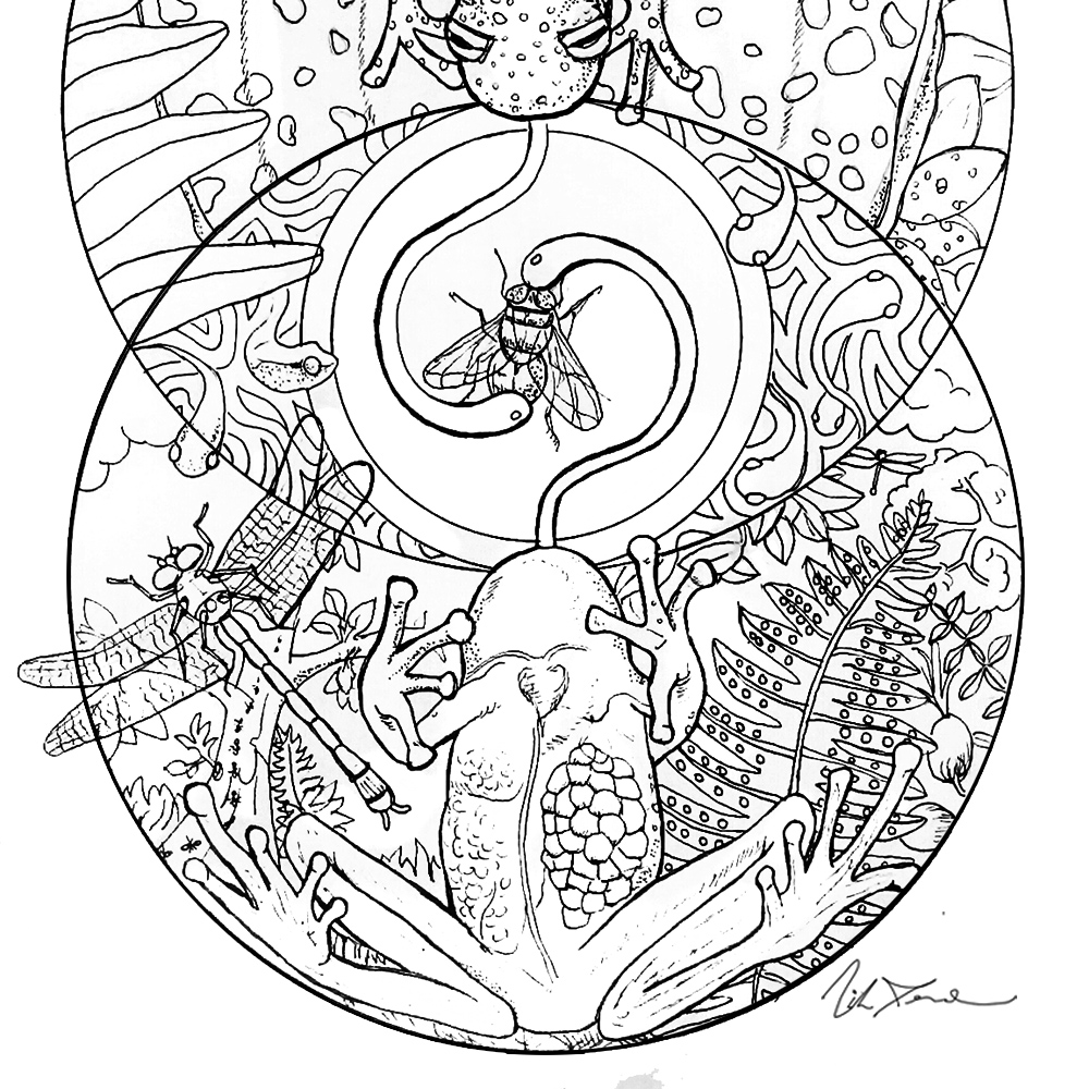Exotic and endangered species coloring book 'Last Chance