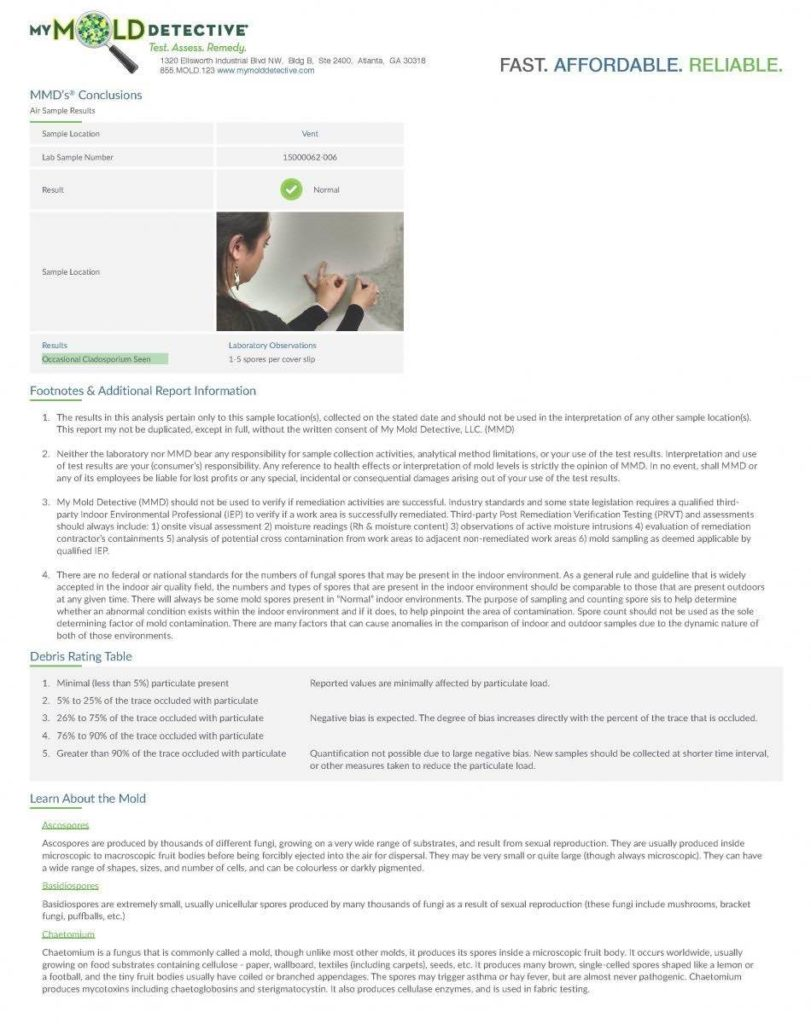 Website Usability Analysis Report Sample And Example Of A Good Website Review