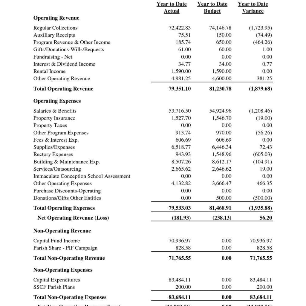 Non Profit Organization Balance Sheet Template And Nonprofit Financial Statements
