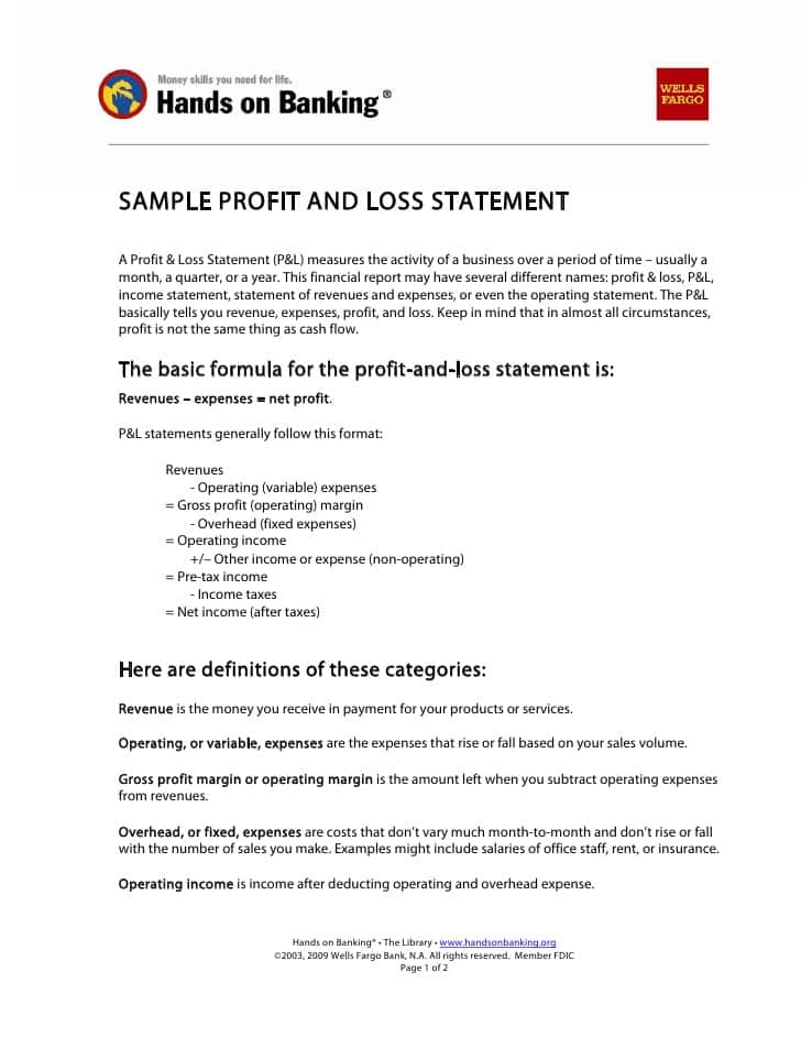 Sample Profit And Loss Statement For Non Profit Organization And Example Profit And Loss Statement For 1099 Employee