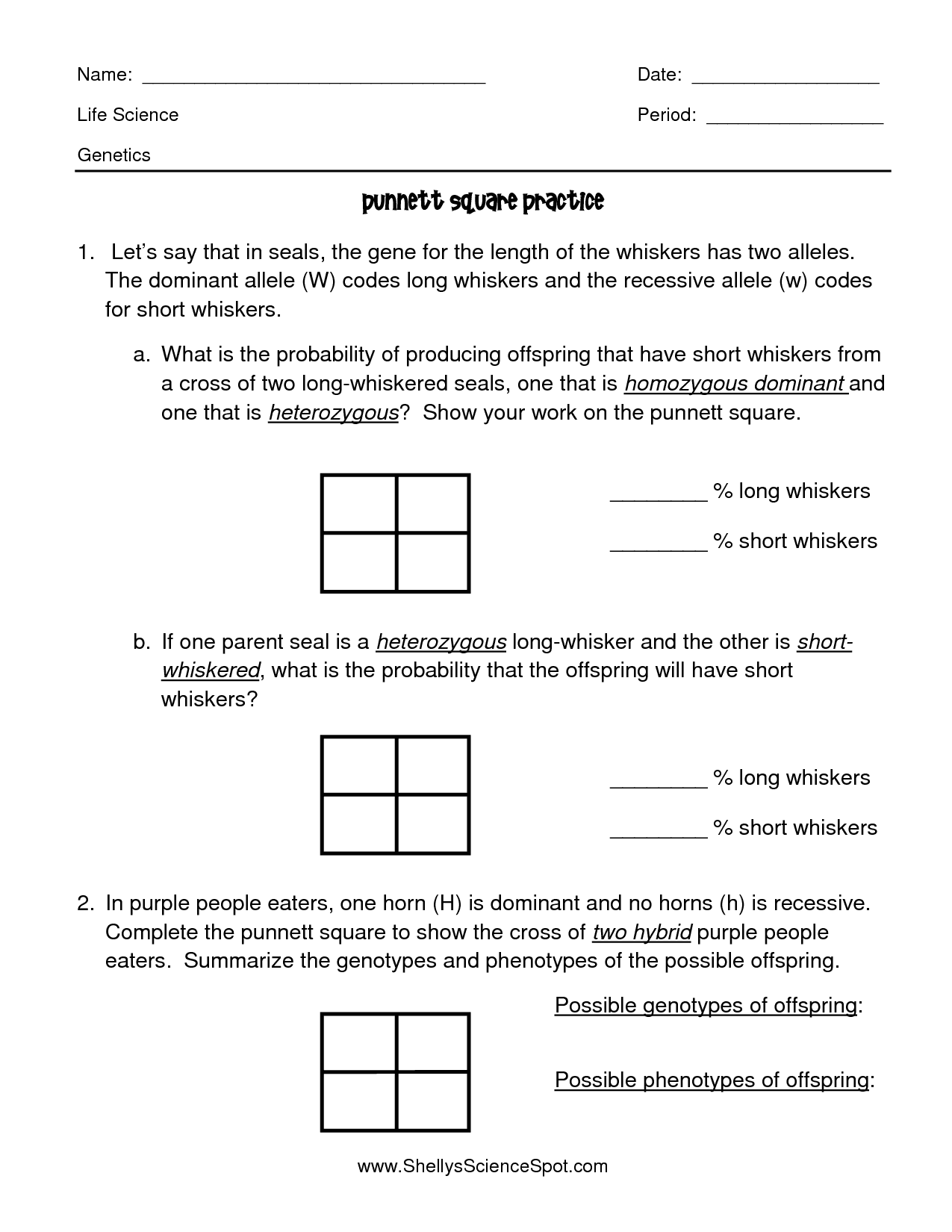 Genetics And Inheritance Worksheet And Ap Biology Genetics Practice Problems Answers
