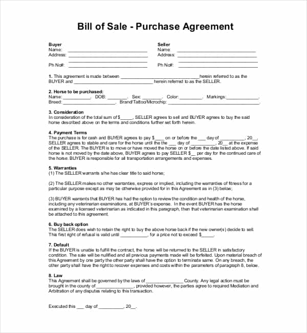 Horse Bill Of Sale Word Document And Aqha Bill Of Sale