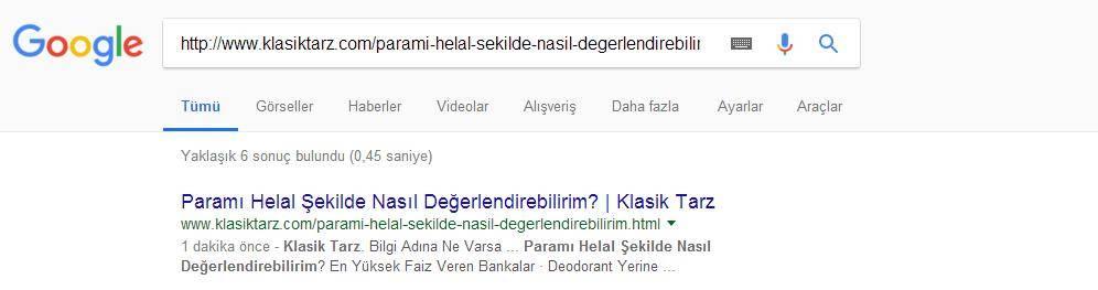 Seo Deneyi Google Indeklesmesi