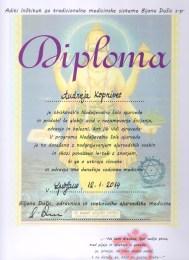 Diploma-Nadaljevalne-sole-Ayurvede