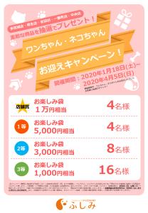 予告次回38回イベントTVCM・第お迎えキャンペーンのご案内・宮城5店舗合同(ふしみ)