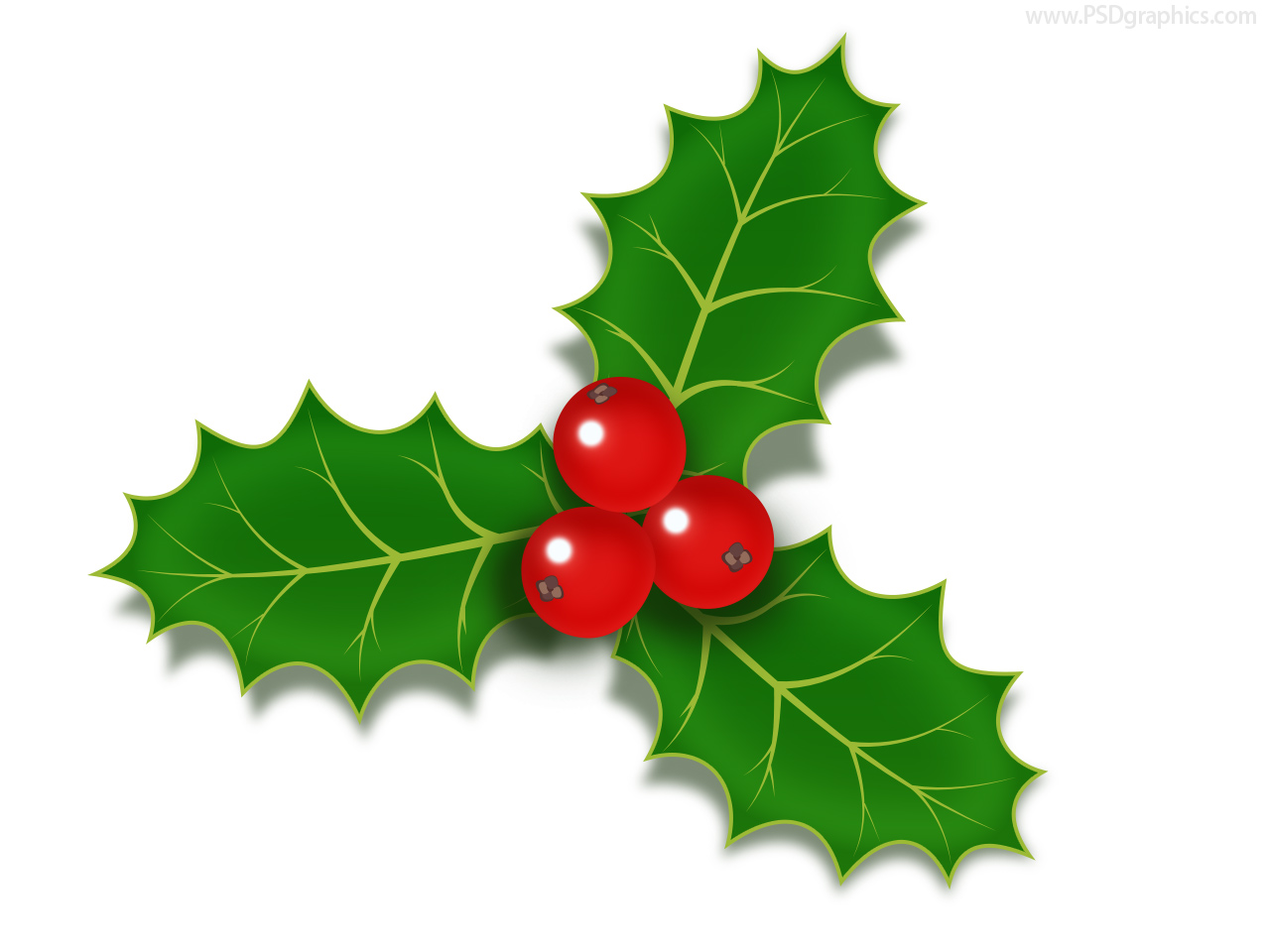 christmas holly berries icon