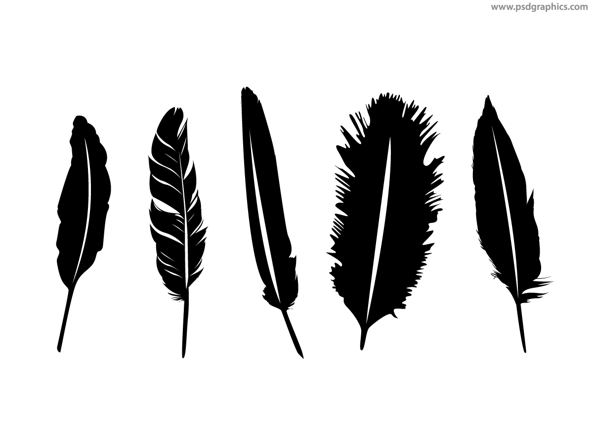Vector Feathers EPS PSDGraphics