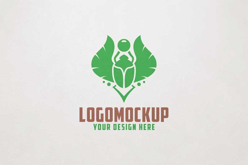 Front View Logo Mock-ups