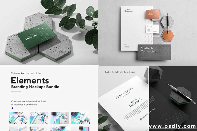 Creativemarket Hexamed Branding Mockup 4126226