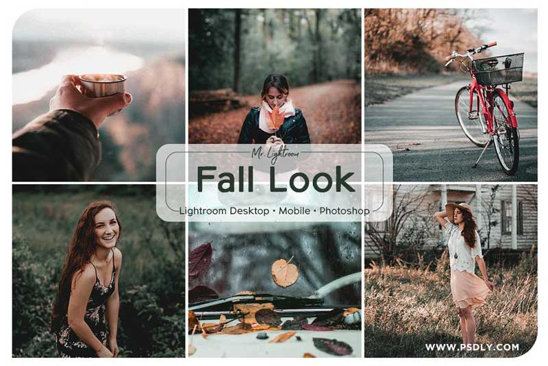 Fall Look Lightroom Presets 2689825