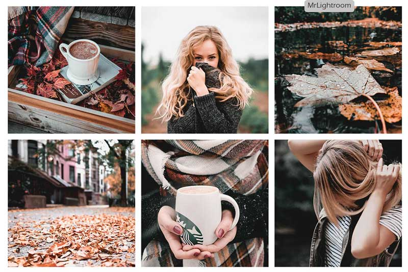 Creativemarket Fall Look Lightroom Presets 2689825