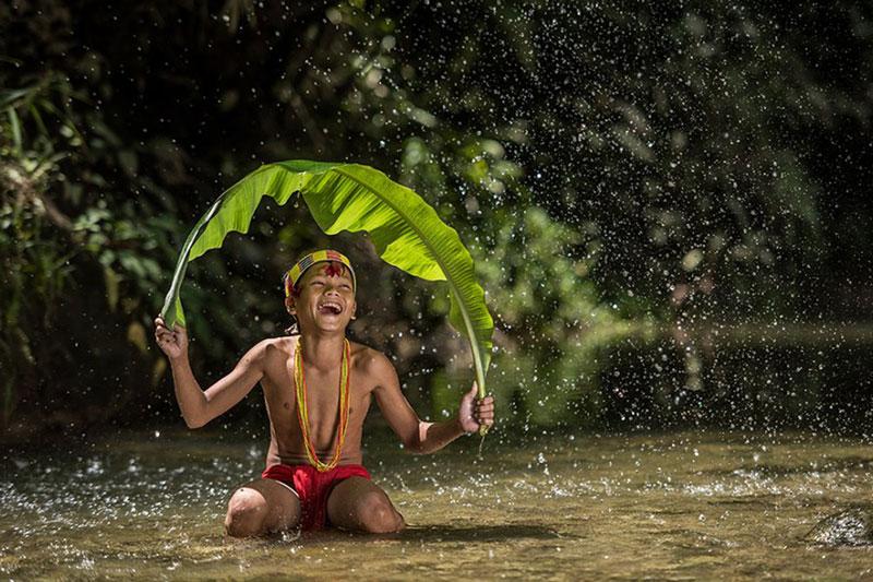 Rain Forest Desktop Presets 4594872 7