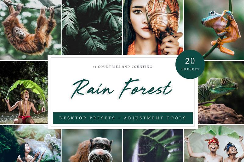 Rain Forest Desktop Presets 4594872
