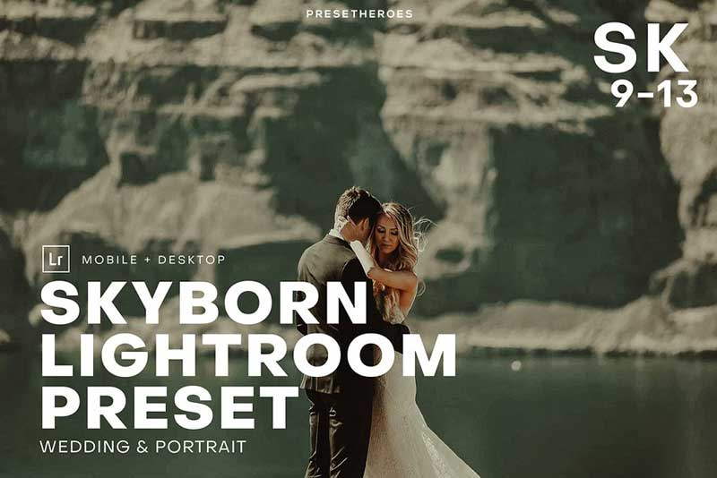 Skyborn High Quality Premium Lightroom Presets Download Free