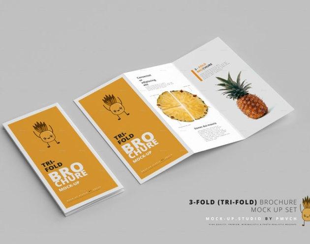3 Fold 2528Tri Fold2529 Brochure Mockups 26039647