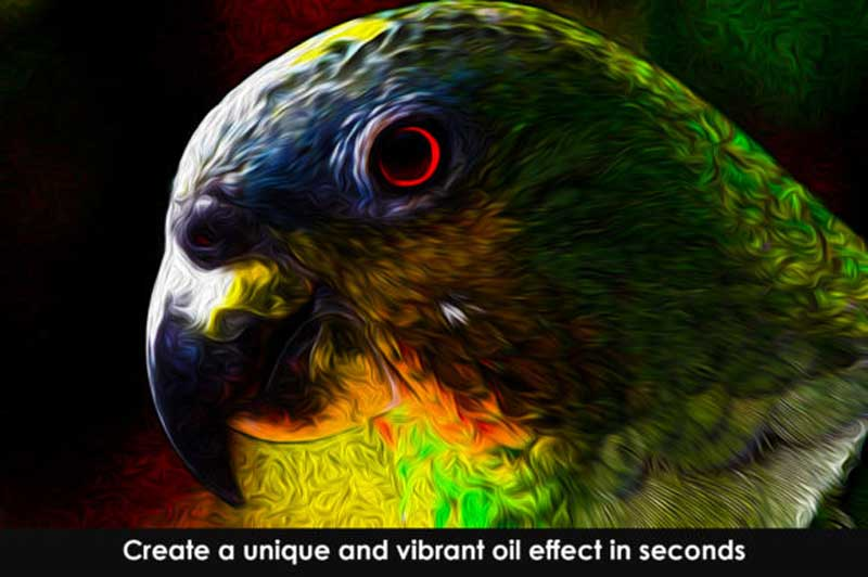 Vibrant Oil Painting Photoshop Action