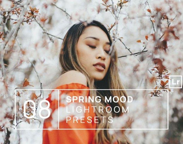 8 Spring Mood Lightroom Presets