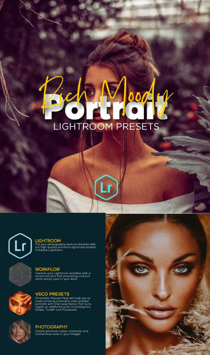Premium Portrait Lightroom Bundle For Mobile and Desktop Lightroom