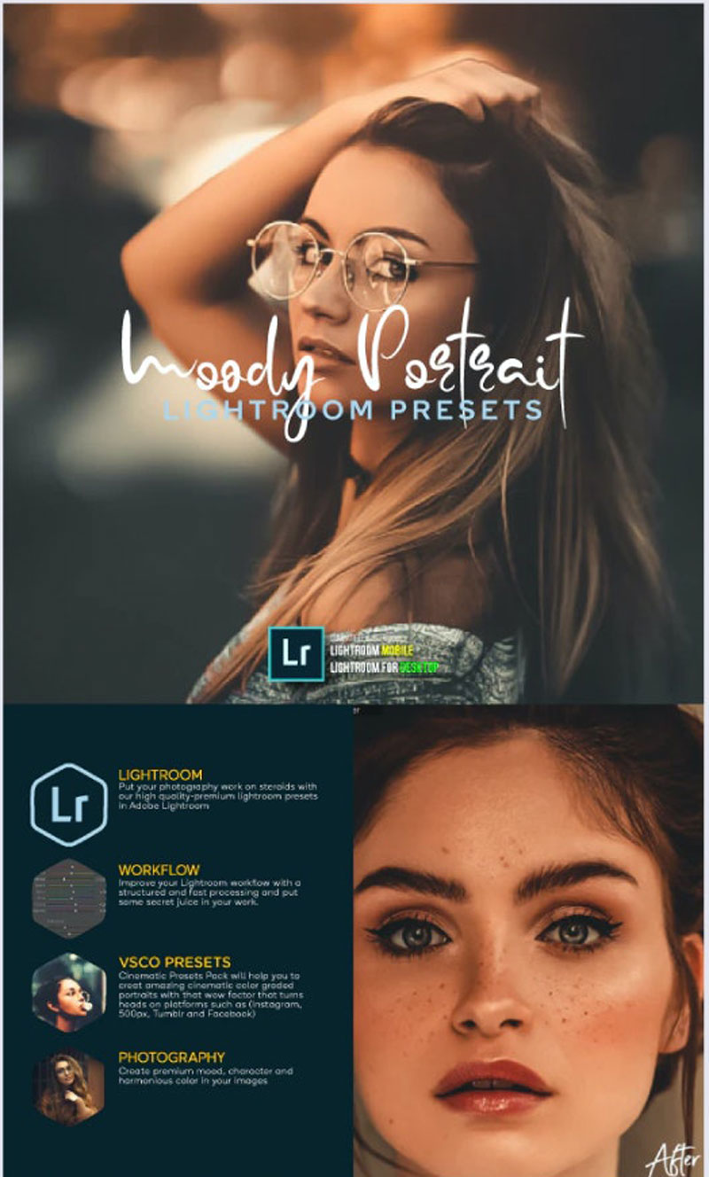 Premium Portrait Lightroom Bundle For Mobile and Desktop Lightroom