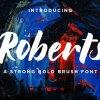 Roberts // Strong Bold Brush Script 3953910