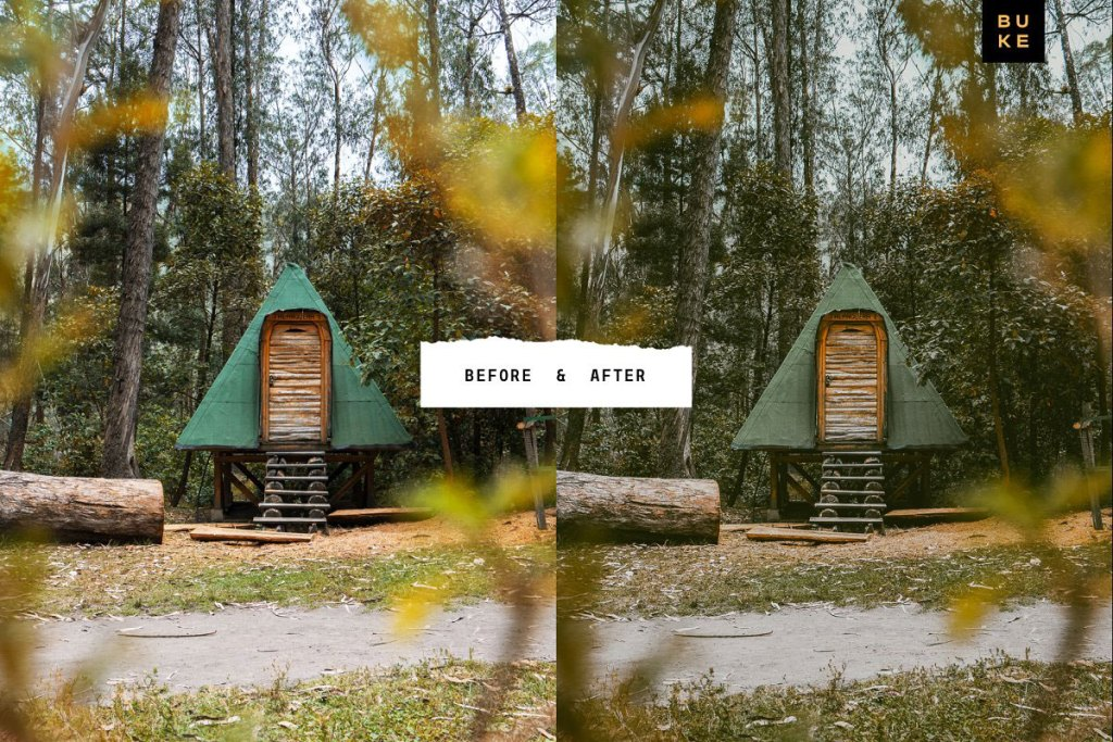 4 Forest Tales Lightroom Presets 5003403