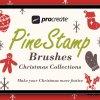PineStamp – Procreate Brush