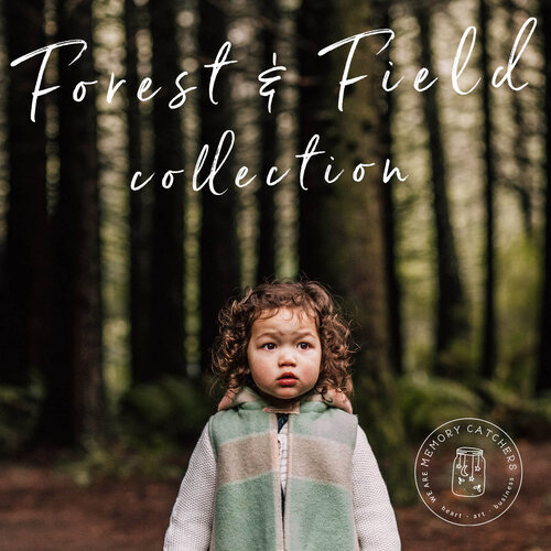 Forest & Field Preset Collection