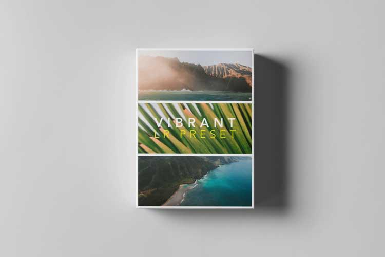 Tropic Color - LR PRESETS - VIBRANT