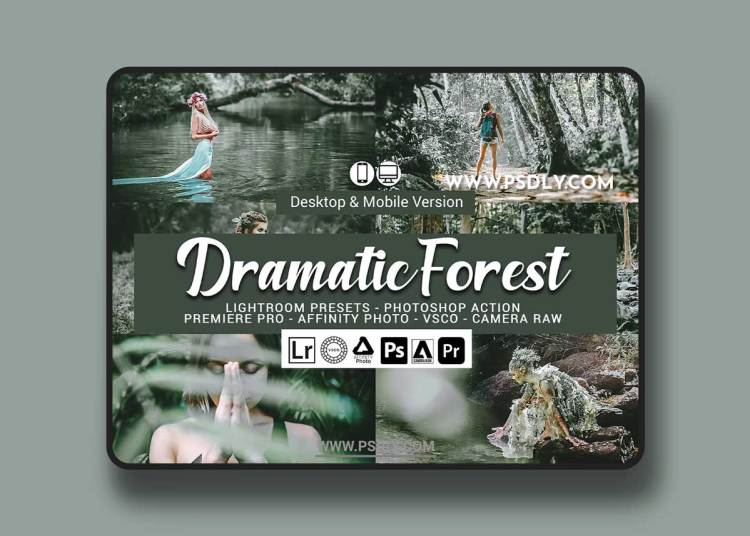 CreativeMarket - Dramatic Forest Presets 5689538