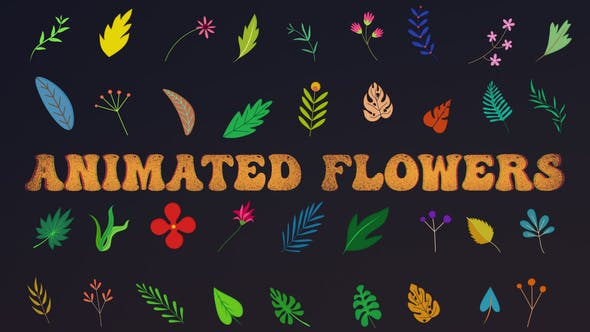 Videohive Animated Flowers    After Effects 33714560