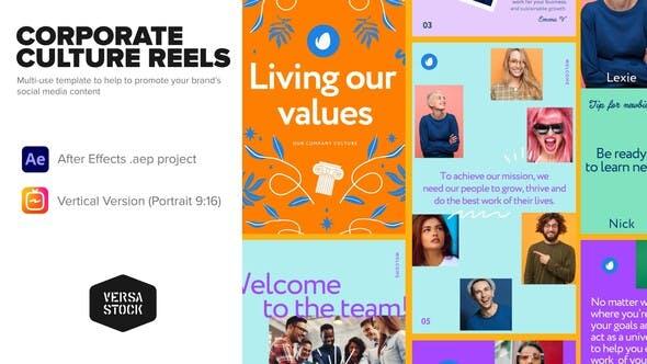 Videohive Vertical Corporate Culture Book Stories 33838652