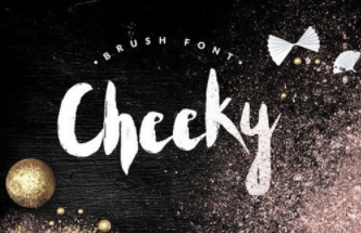 Cheeky - - handwritten brush font BONUS Fonts