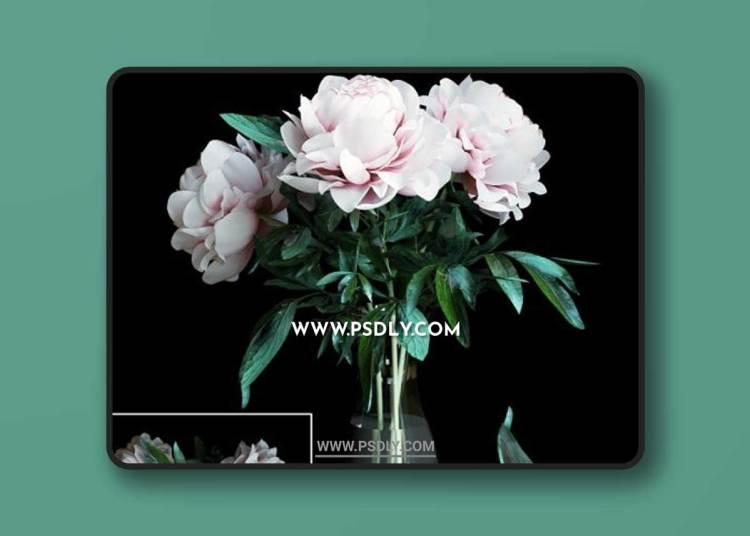 Bouquet Of Peonies 3D Models