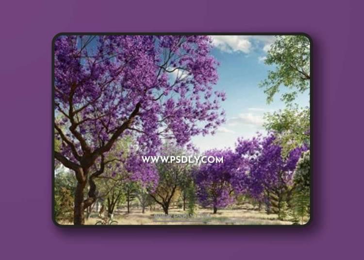 Globe Plants – Bundle 08 – Oceania Trees