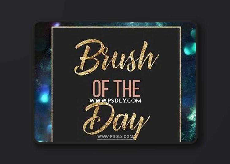 Meg Bitton Live — Brush of the Day