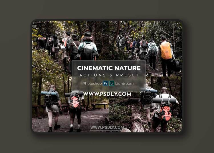 Natural Cinematic - (Presets & Actions)