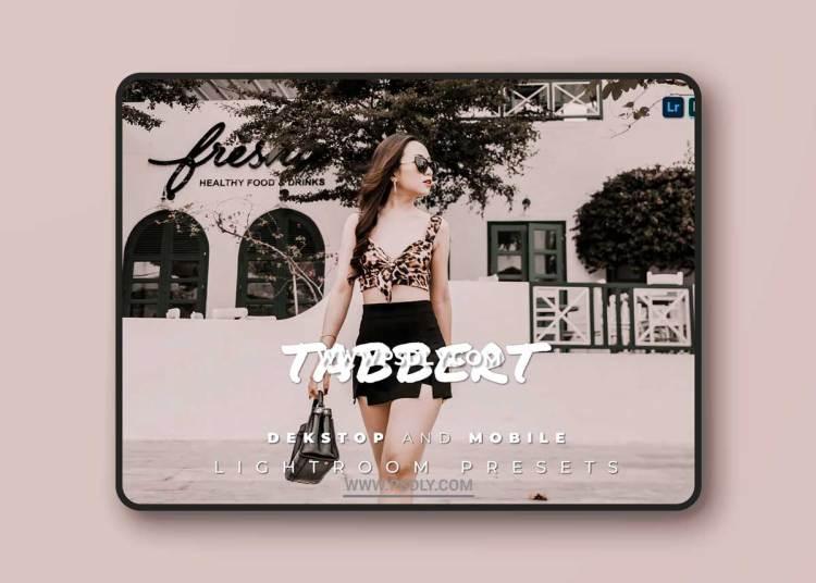 Tabbert Desktop and Mobile Lightroom Preset