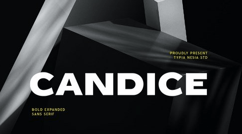 Candice - Heavy Bold Expanded Display Game Sans