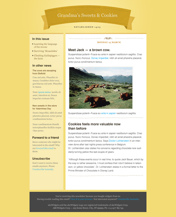 Boutique Email Newsletter Template