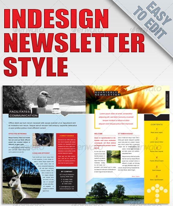 Printable Newsletter Templates In Psd  Indesign Formats