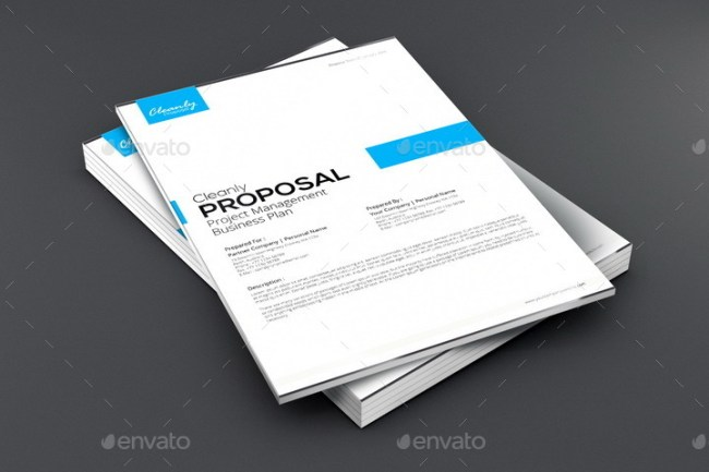 Cleanly Proposal Template